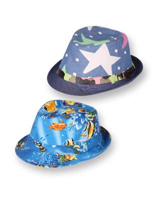 Шляпа 22815 цветные