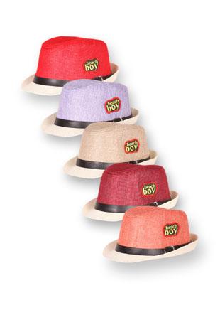 Шляпа 22815 boy